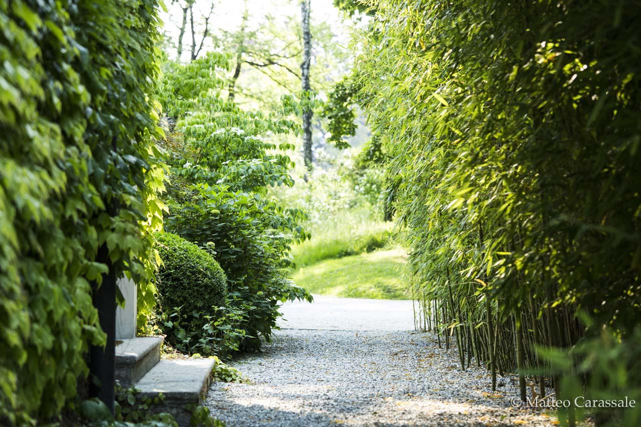 Garden On The Como Lake. Menaggio. Italy