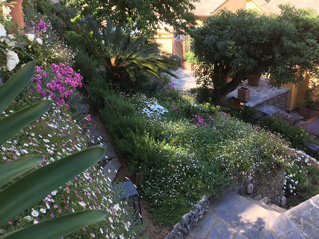 Amazingstudio Portofino 0005 IMG 2655
